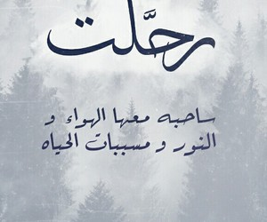 arabic, forest, and quotes image