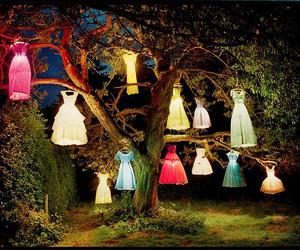 dress, tree, and light image