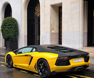 black and yellow, vehicle, and cars image