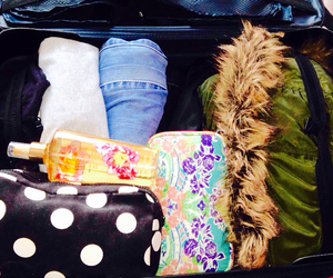 airplane, forever 21, and luggage image