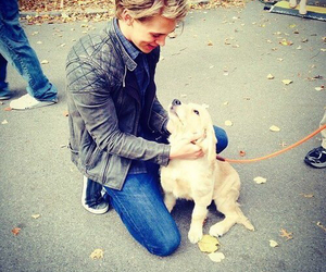 austin butler, cute, and dog image