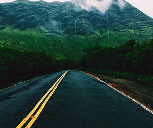 hipster, nature, and grunge image