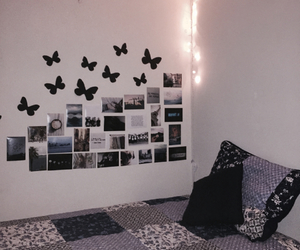 photos, room, and butterfly image