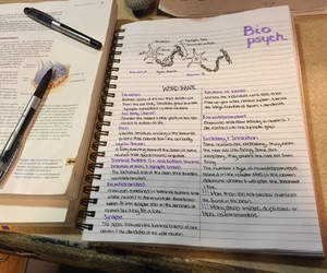 motivational, notes, and study image