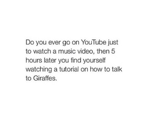 giraffe, video, and music image