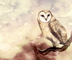 heart, owls, and pretty image