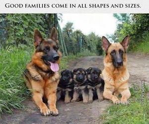 family and three image