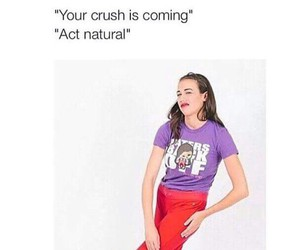 funny, crush, and miranda sings image