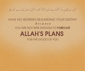 allah, belive, and destiny image