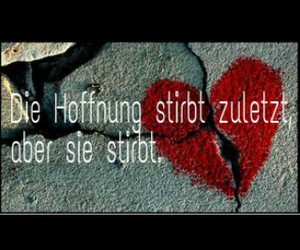 liebe, sprüche, and hass image