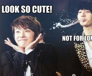 kpop, cute, and funny image