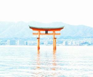 japan, pray, and shrine image