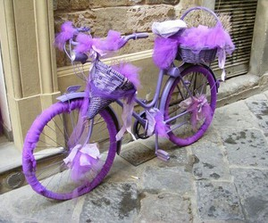 bicycle and purple image