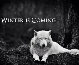 game of thrones, wolf, and winter image