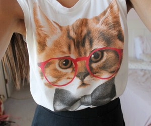 cat, clothes, and shirt image