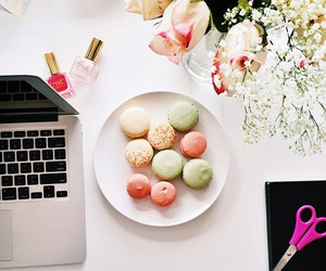 colors, office, and macaroons image