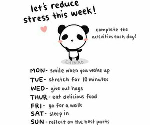 panda, stress, and week image