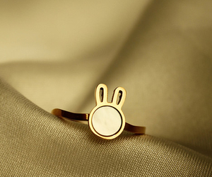 rabbit, 'luckystar~, and ring image