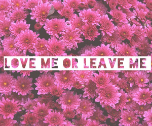 love, pink, and flowers image
