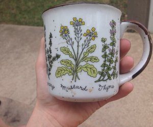 plants, mug, and indie image