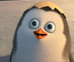penguin and love image