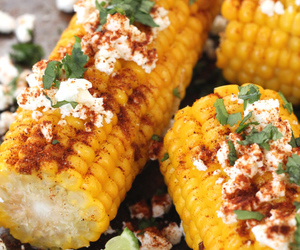 corn, food, and lunch image
