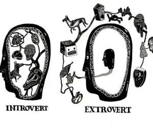 art, extrovert, and introvert image