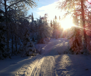 inspiration, snow, and snowmobile image