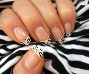 nails, nail art, and zebra image