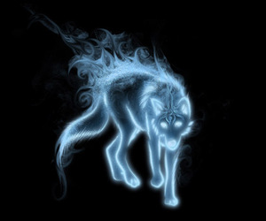 wolf, harry potter, and patronus image