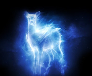 harry potter, patronus, and doe image