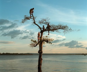 people, river, and tree image