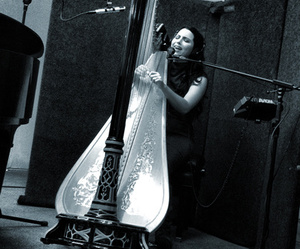 acoustic, evanescence, and harp image