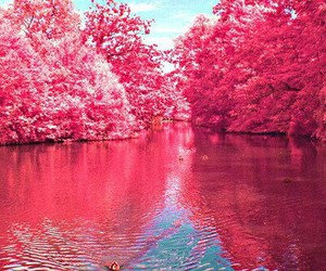 pink and beautiful image