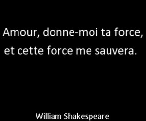 force, william shakespeare, and amour image