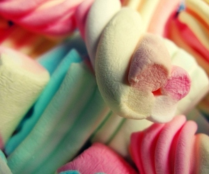 sweet, candy, and marshmallow image