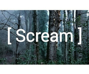 scream, place, and tumblr image