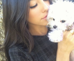 madison beer, dog, and puppy image