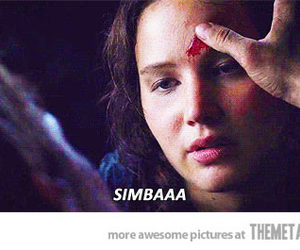 funny, hunger games, and katniss image