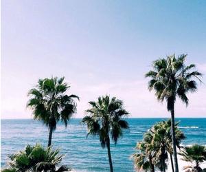 beach, california, and Island image