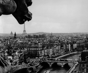 paris, notre dame, and photography image