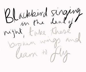 blackbird, Lyrics, and quote image