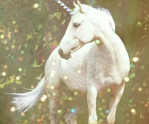 unicorn, magic, and white image