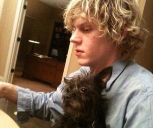 evan peters, dog, and ahs image