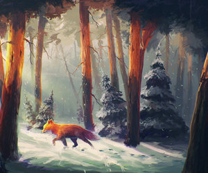 fox, winter, and forest image