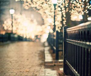 light, street, and christmas image