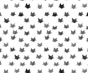black & white, cool, and cats image