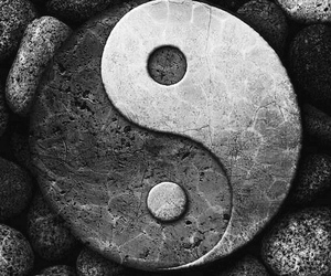 balance, black & white, and complete image