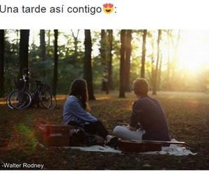 amor, arboles, and atardecer image