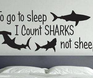 sharks, sleep, and count sharks image